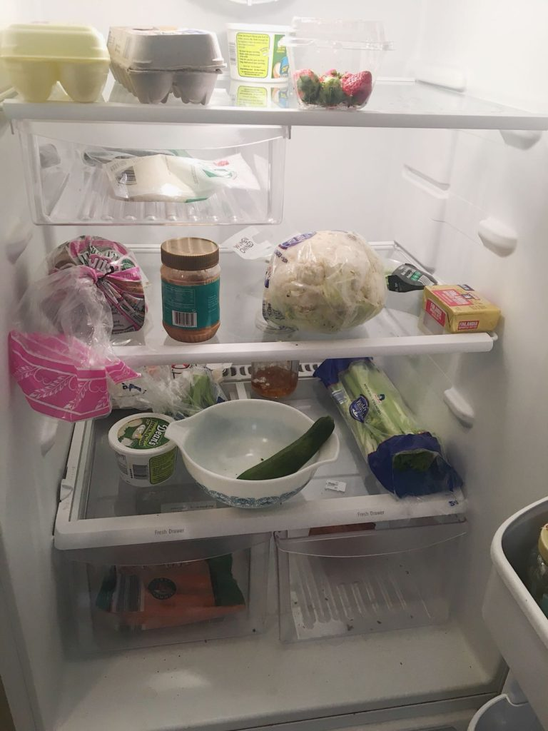 refrigerator staples current refrigerator shot