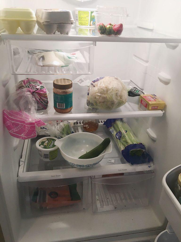 refrigerator staples current refrigerator shot