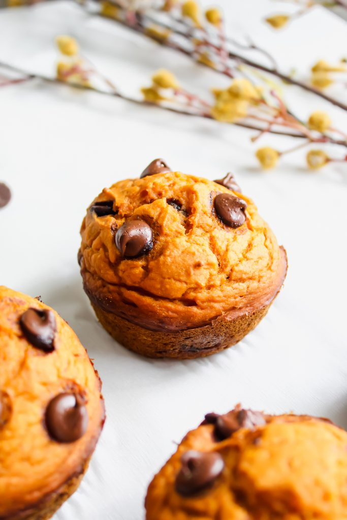 Healthier Pumpkin Chocolate Chip Muffin in the sunlight