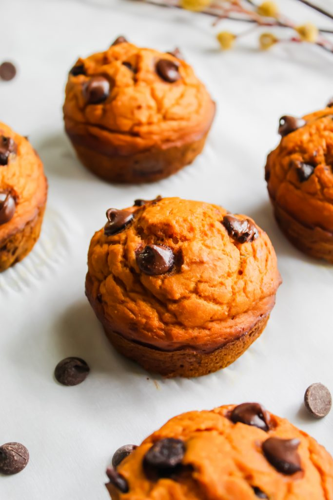 healthier pumpkin chocolate chip muffins with branch in the background