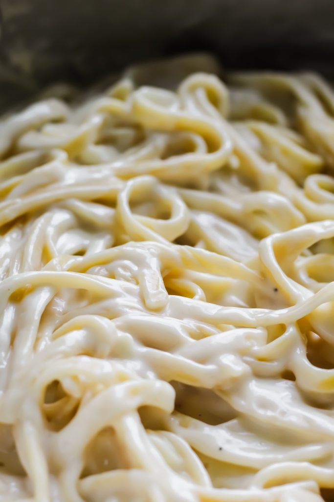 close up of fettuccine alfredo noodles