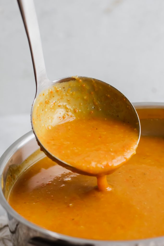 ladle full of Potato Carrot and Leek Soup